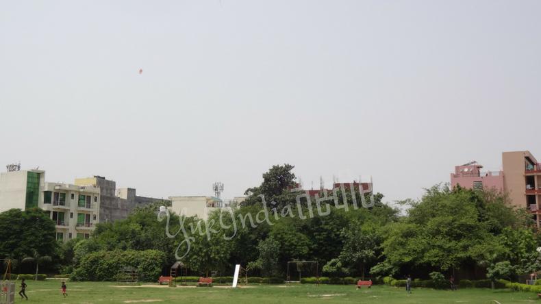 広い公園で凧揚げをする人たち