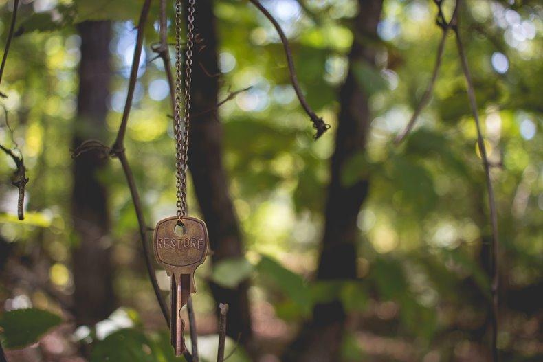 森の中で木にぶら下がる鍵